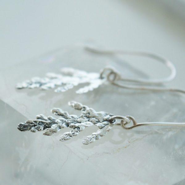 Tiny Cedar Earrings